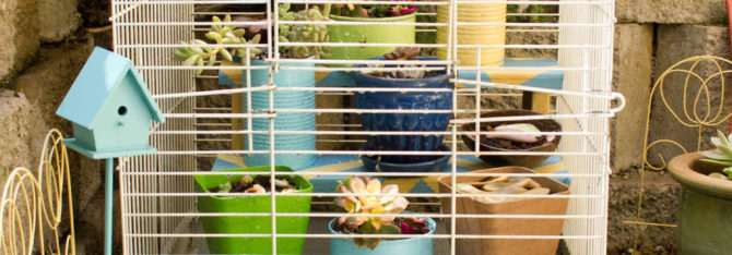 Build a Chevron Plant Riser for your Window Well Garden