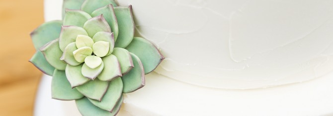Simple Succulent Wedding Cake – Utah Food Photographer