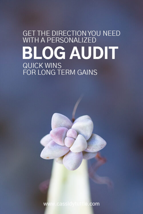 blog audit