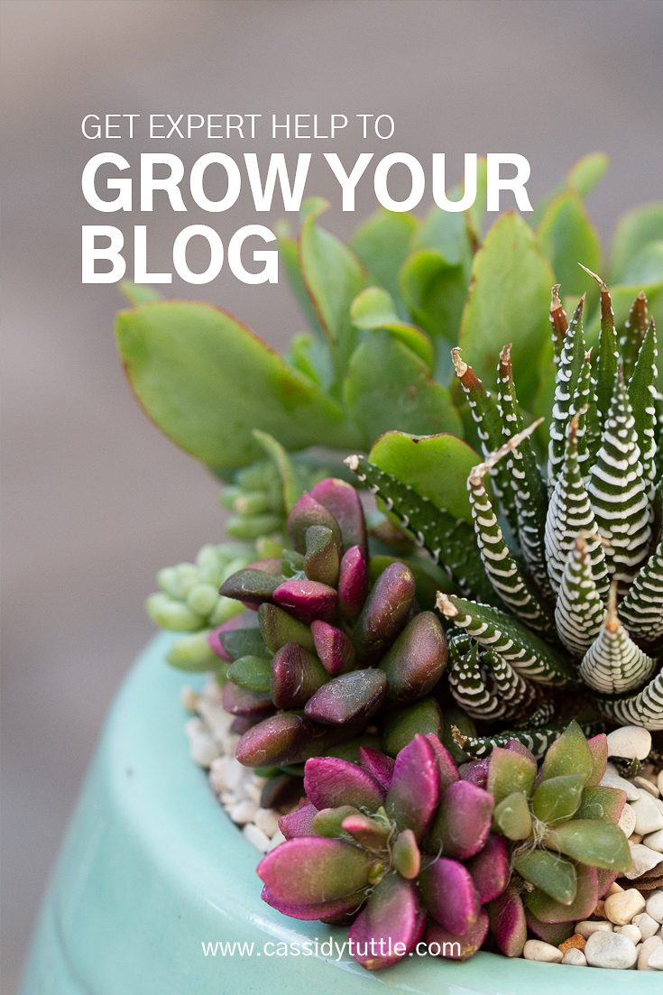 get expert help to grow your blog